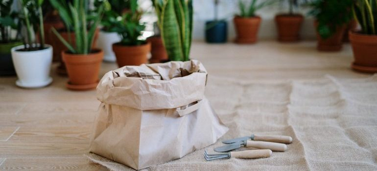 bag with soil and plants in the background to pack your plants
