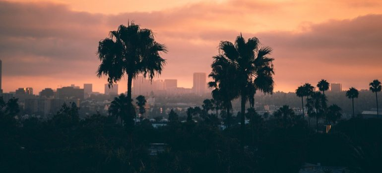 Los Angeles during sunset.